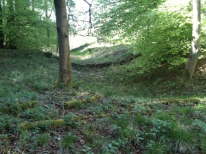 Cholesbury Hillfort